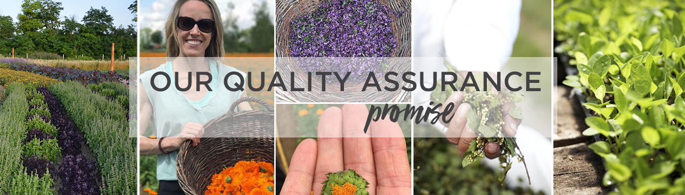 Quality Assurance Promise