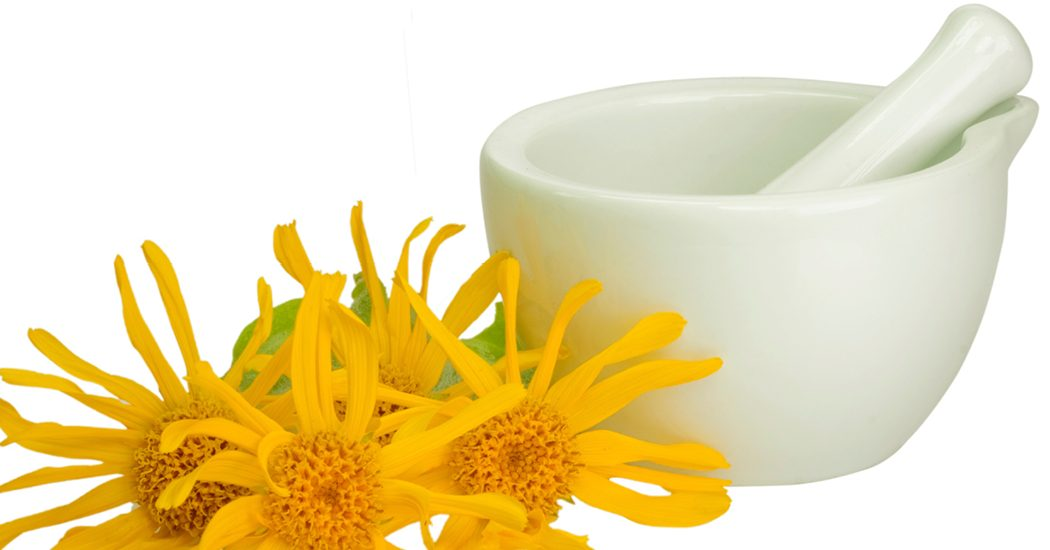 Blog_homeopathy arnica